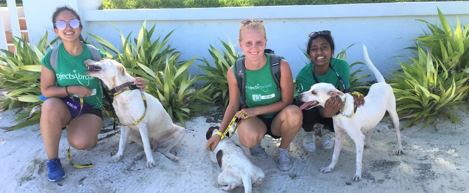 Voluntarios de cuidado animal paseando a los perros durante su programa.